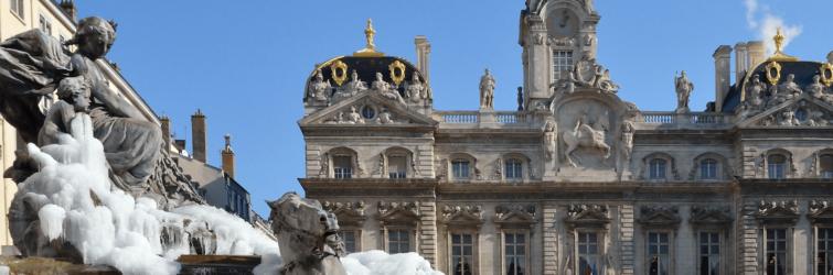 Image for Lyon